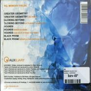 MEMORY FIELDS (CD)