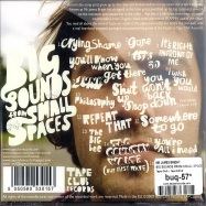 BIG SOUNDS FROM SMALL SPACES (CD)