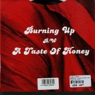 BURNING UP / A TASTE OF HONEY (7 INCH)