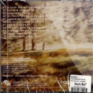 THE AMARANTH FIELDS (CD)