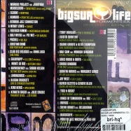 BIG SUR LIFE FORMENTERA (2CD)