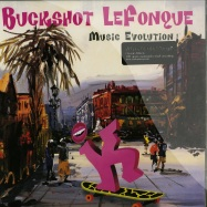 MUSIC EVOLUTION (LP)