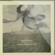 A SMALL MURMURATION (CD)