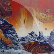 FOLLOW THE PATH (2X12 LP)