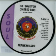 DO I LOVE YOU (INDEED I DO) (7 INCH PIC DISC)