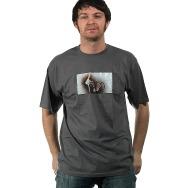 Veto Logo Shirt (Grey)