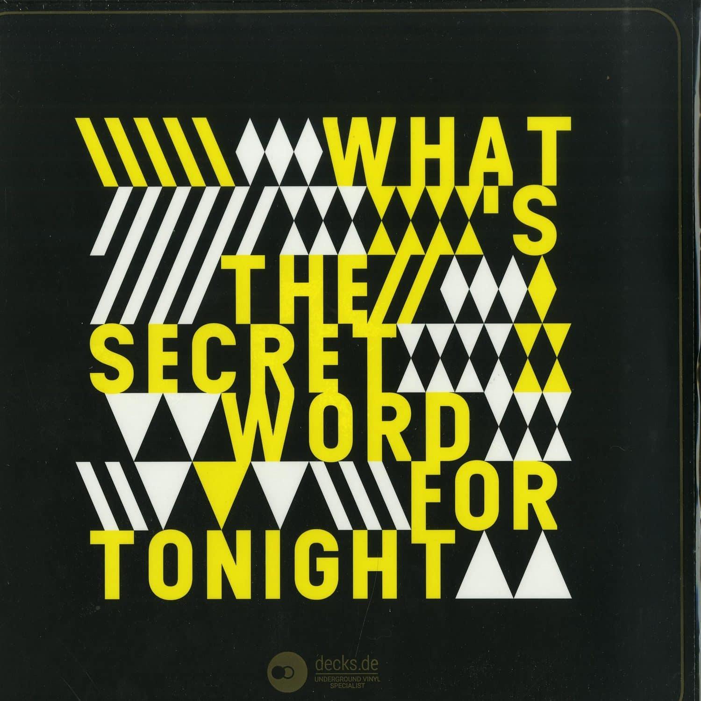 Joe Metzenmacher - WHATS THE SECRET WORD FOR TONIGHT EP