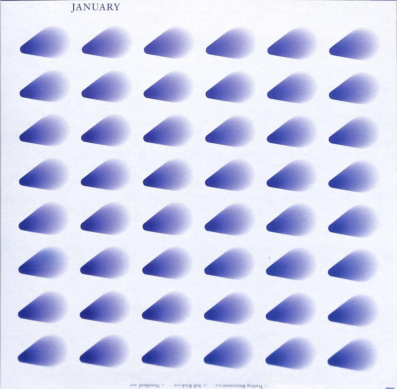 Blank Gloss - JANUARY LP