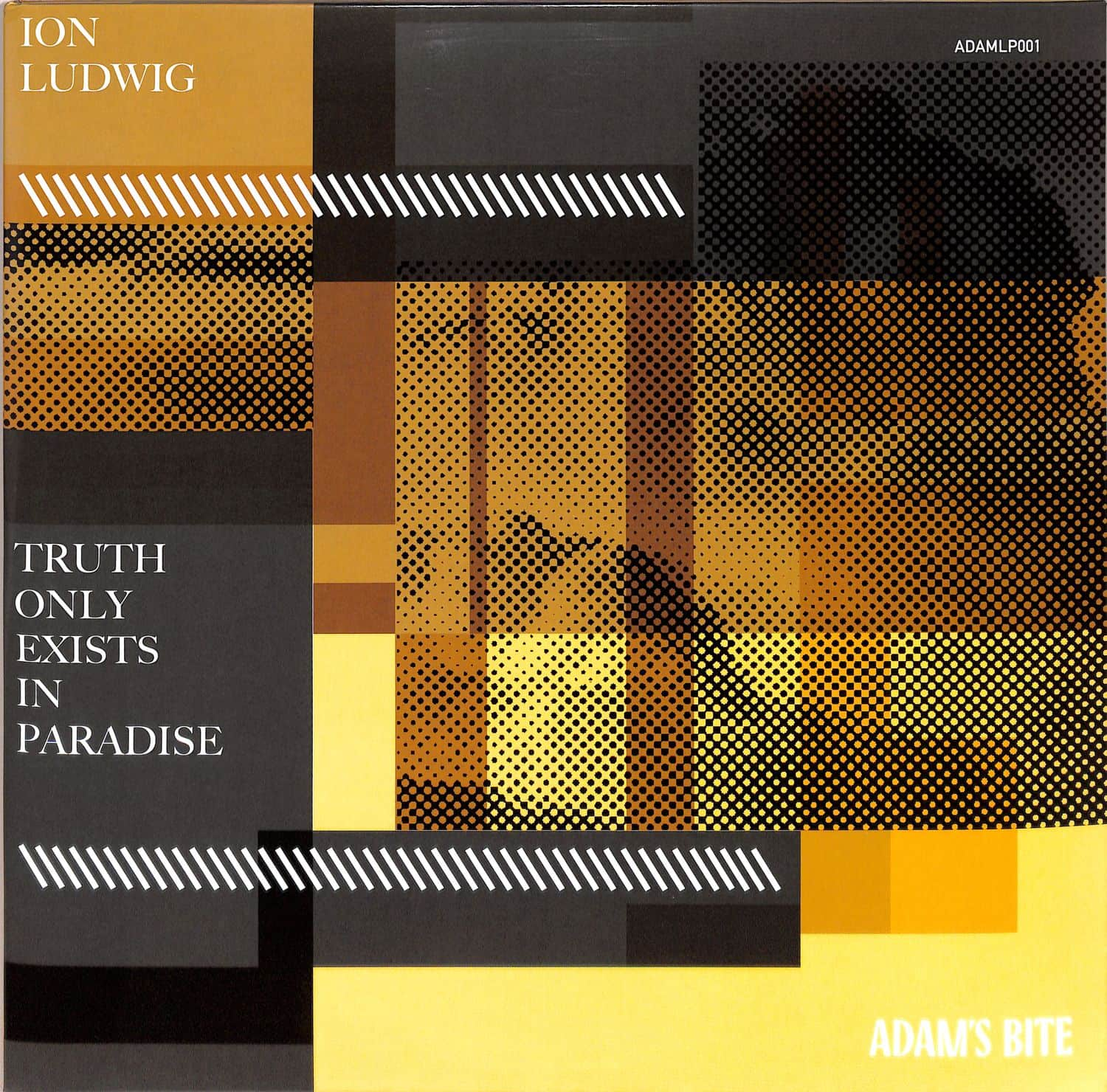 Ion Ludwig - TRUTH ONLY EXISTS IN PARADISE