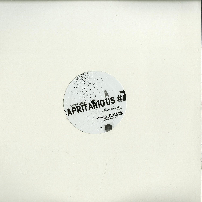Theo Parrish - CAPRITARIUS 7 / LEVELS