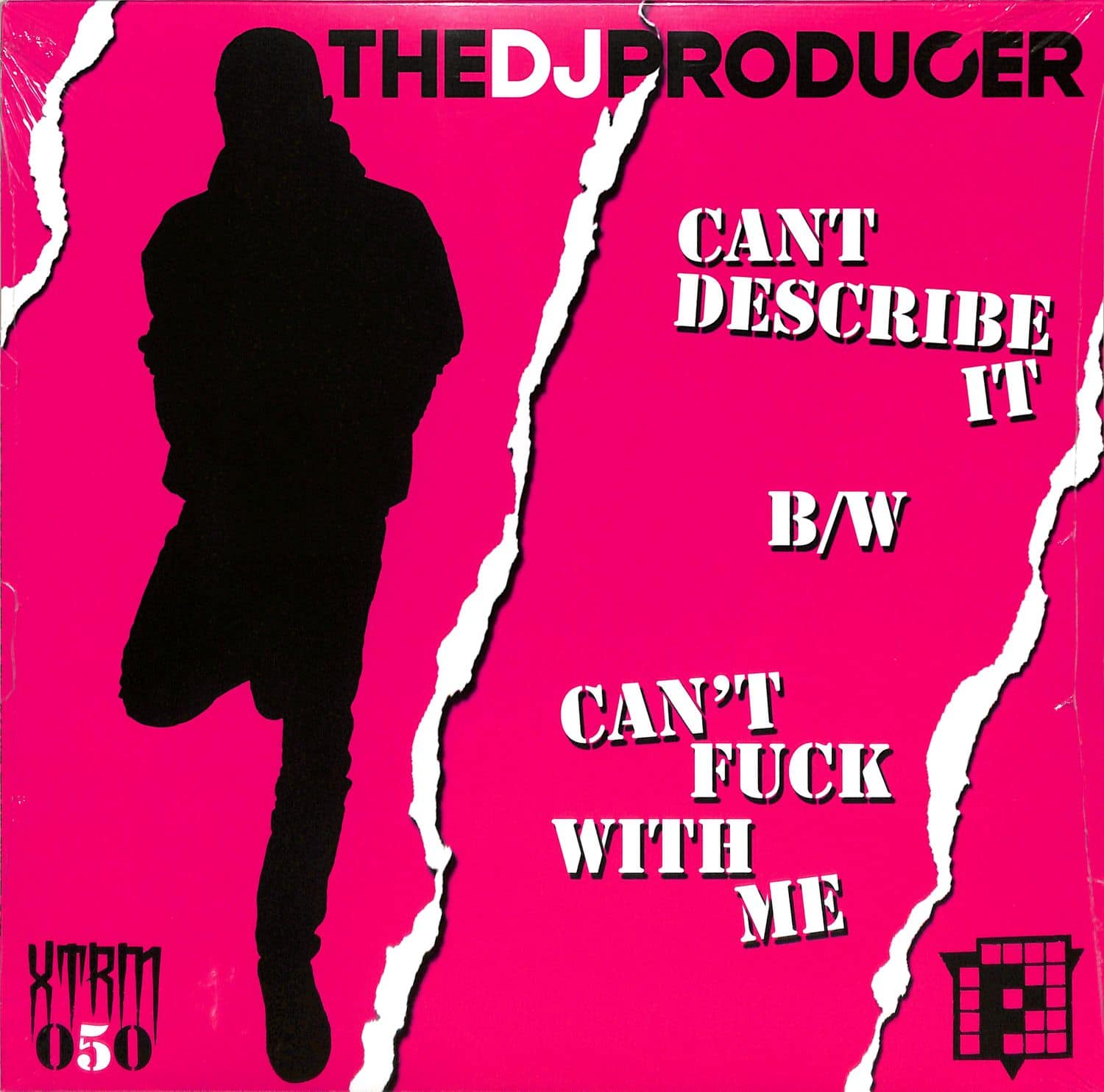 The DJ Producer - CANT DESCRIBE IT