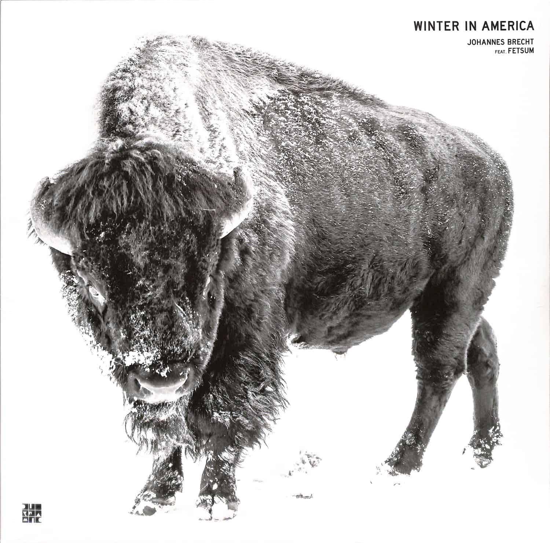 Johannes Brecht feat. Fetsum - WINTER IN AMERICA