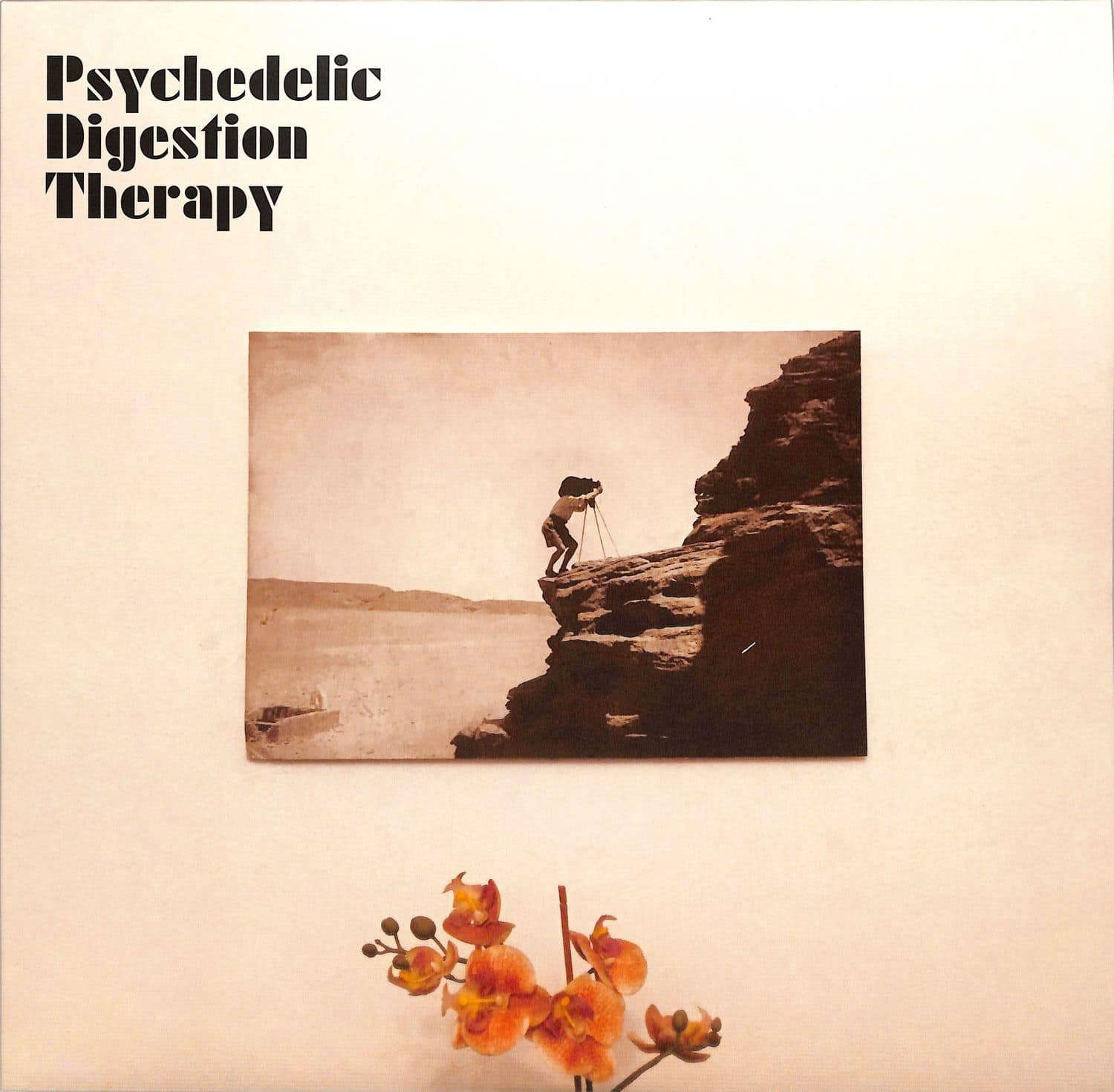 Psychedelic Digestion Therapy - PSYCHEDELIC DIGESTION THERAPY