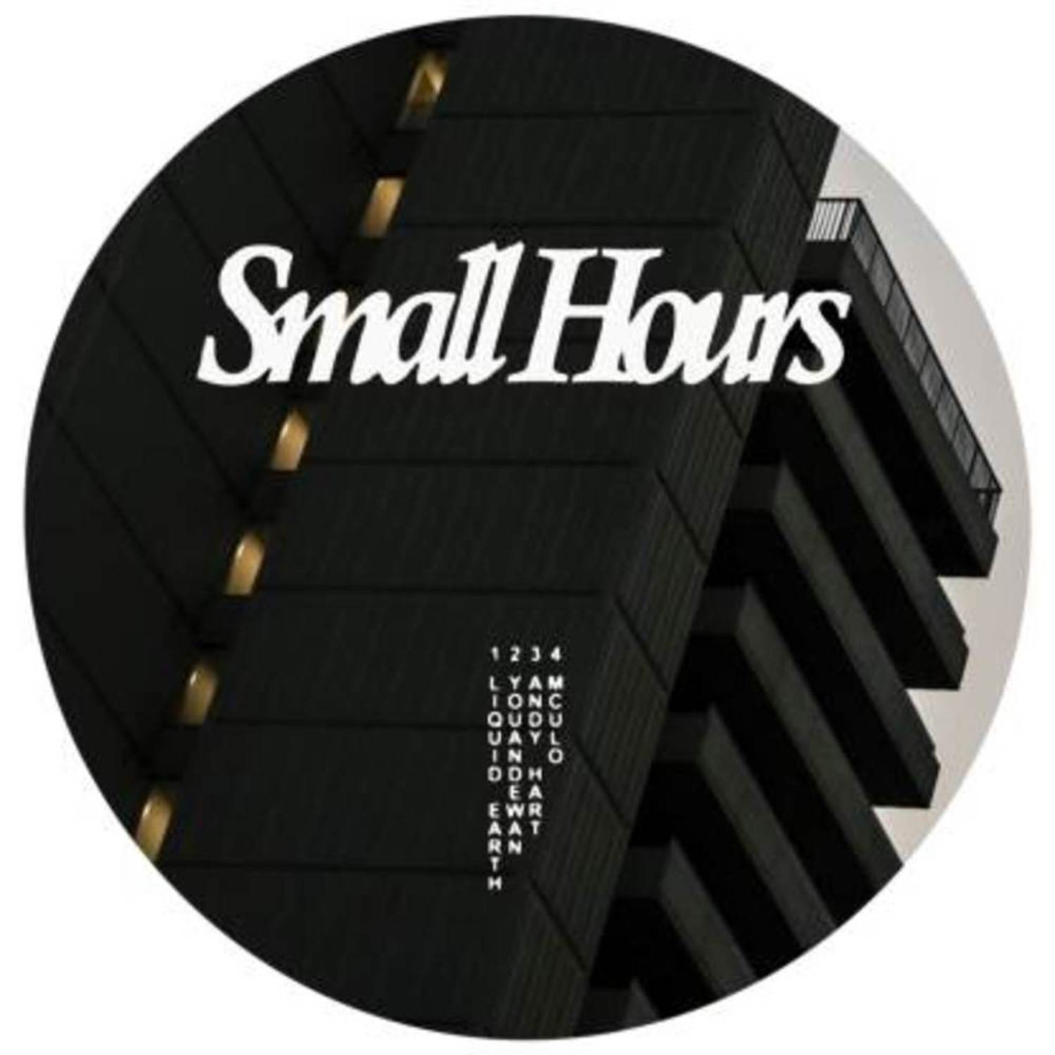 Liquid Earth, Youandewan, Andy Hart... - SMALL HOURS 004