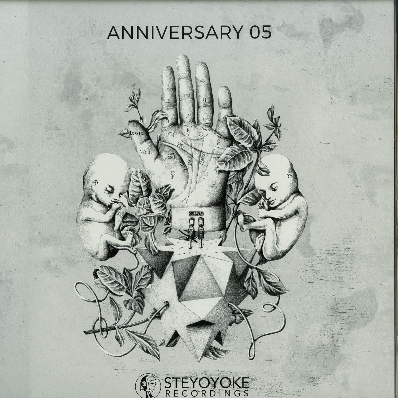 Various Artists - STEYOYOKE ANNIVERSARY VOL 5
