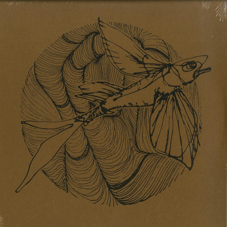 Federsen - THE MYTH EP
