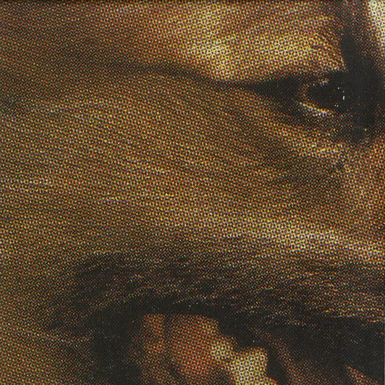 Panthera Krause - STONITH