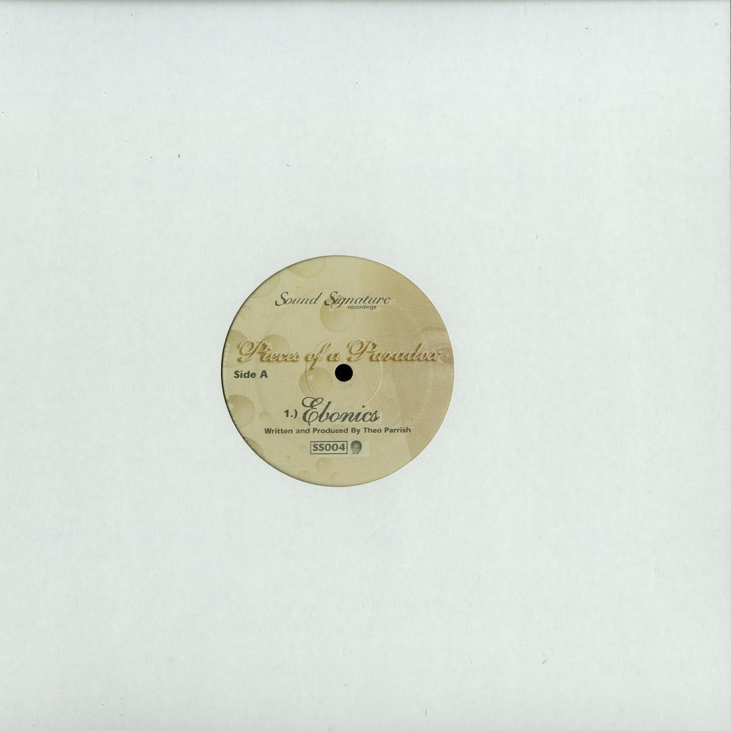 Theo Parrish - PIECES OF A PARADOX