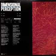 Back View : Valentin Ginies - DIMENSIONAL PERCEPTION - 11001 Records / 11001-1