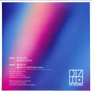Back View : Pressure Point - WRONG SYSTEM EP (SPACETRAVEL REMIX) - DXL Records / DXLREC003
