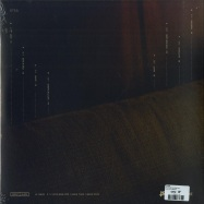 Back View : Tycho - WEATHER (LTD CLEAR 180G LP + MP3) - Ninja Tune / ZEN257X
