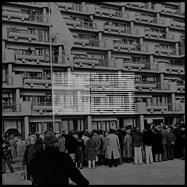 Back View : Hannibal Peck - ZENOBUURT TORRIES LP (TAPE + MP3) - TH Tar Hallow / HALLOW3