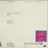 Back View : Nicholas Desamory - YOU ONLY NEED TO KNOW HOW IT FEELS TO BELIEVE (LP) - Staubgold / 126861