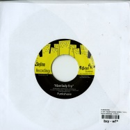 IT AINT NEVER GONNA WORK (7 INCH)