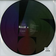 Back View : Various Artists - 15 YRS SYSTEMATIC (PICT DISC) - Systematic / SYST0124-6