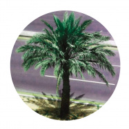 Back View : Harrison BDP - WATCHING THE WORLD GO BY EP - Lost Palms / PALMS022