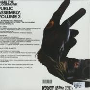 PUBLIC ASSEMBLY VOL. 2 (LTD GOLDEN VINYL LP)