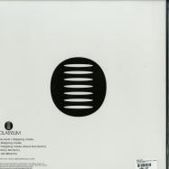 Back View : Miss Jools - STEPPING INSIDE (VINYL ONLY / INCL DANA RUH RMX) - Sol Asylum / SA012