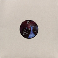 Back View : Viels - PURE COINCIDENCE EP - Dynamic Reflection / DREF043