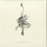 Back View : MartiNils - FRANKONIA EP (PAUL AGRIPA REMIX) - Subtil / SBTL012