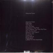 Back View : James Blake - ASSUME FORM (180G 2LP + MP3) - Polydor / 7744189