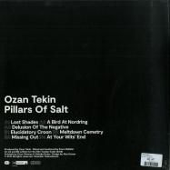 Back View : Ozan Tekin - PILLARS OF SALT (LP) - Noorden / TwelveSeven