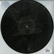 Back View : Morbid Angel - KINGDOMS DISDAINED (LTD PICTURE LP) - Silver Lining Music / SLM071P52
