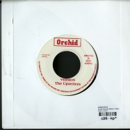 PLACE CALLED AFRICA (7 INCH)