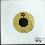 HEARTS DESIRE / HOLDING YOU, LOVING YOU (7 INCH)