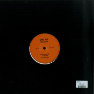 Back View : Dana Ruh - STILL VAUSE - Slices of Life / SOL11