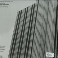 Back View : Landwehr & Fleer / Environ. - EXORDIUM EP - Rawimprint / RI001