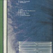 Back View : Karenn - GRAPEFRUIT REGRET (2LP) - VOAM / VOAM002