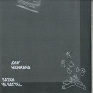 Back View : Fallbeil - SATAN IM SATTEL (CASSETTE + 7 INCH + DL CODE) - VIS / VISC06