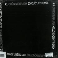Back View : Sound Species & Ache Meyi - REMIX EP (INCL RON TRENT REMIX) - MANANA004