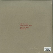 Back View : Hoavi - PHOBIA AIRLINES (2LP, 180 G VINYL) - Fauxpas Musik / FAUXPAS029