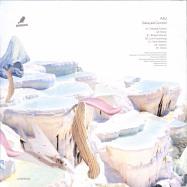 Back View : Alci - DELAYED CONTROL (2LP, VINYL ONLY) - Nervmusic Records / NM027
