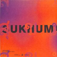 Back View : Josh Baker - EP -Y - Sukhumvit Records / SOI010