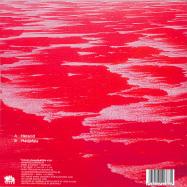Back View : Extrawelt - HERACID / MADJAFALA - Traum / Traum V251
