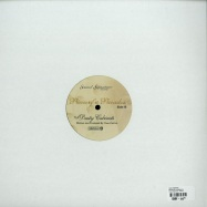 Back View : Theo Parrish - PIECES OF A PARADOX - Sound Signature / SS004