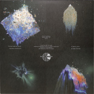 Back View : Sound Synthesis - BEAUTY WITHIN - Furthur Electronix / FE059